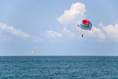 Parachute et mouette Images stock