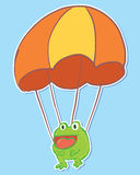 Parachute frog Royalty Free Stock Photos