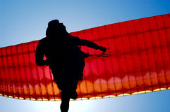 Parachuting. The person on a paraplane flies against the sky Stock Image