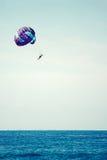 Parachuting at sea Stock Images