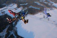 Parachutisme de formation Les parachutistes font une figure dans le ciel photos libres de droits