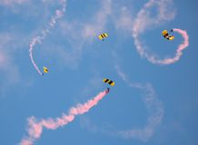 Parachutists do exército Imagens de Stock