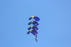 Parachutists in formation Stock Image