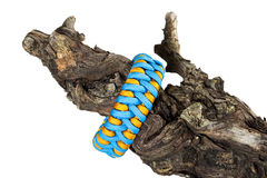 Paracord bracelets on wood. Paracord bracelet on pease of wood Royalty Free Stock Photo
