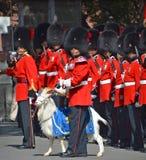 Parada żołnierz Królewski 22nd pułk Obrazy Stock