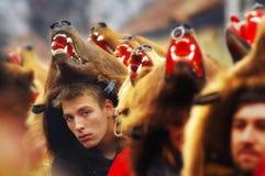 Parada 4 da dança do urso Imagens de Stock Royalty Free