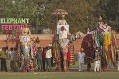 Parada da forma para elefantes Fotografia de Stock Royalty Free