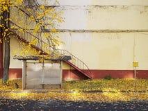Parada de autobús del otoño fotografía de archivo