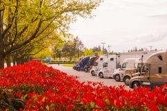 Parada de camiones con los árboles y las playas coloridos hermosos Imagen de archivo libre de regalías