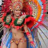Parada de Carnaval Imagem de Stock