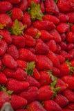 Parada de las frutas y verduras en el La Boqueria, Fotos de archivo libres de regalías