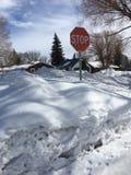Parada del invierno en nieve Foto de archivo libre de regalías