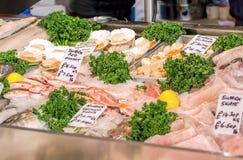 Parada del mercado de los pescados y de los mariscos Visualización de los pescados frescos Imagenes de archivo