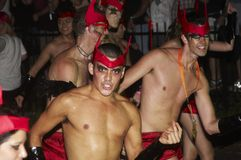 Parada do carnaval, Sydney foto de stock royalty free