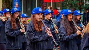Parada 2016 do dia de veteranos Foto de Stock