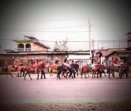 Parada dos cavalos imagens de stock
