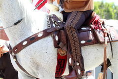 Parada jeździec i koń zdjęcia royalty free