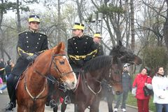 Parada militar - a cavalaria indica Fotografia de Stock