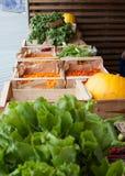 Parada vegetal Imagen de archivo libre de regalías