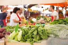 Parada vegetal del mercado Fotos de archivo