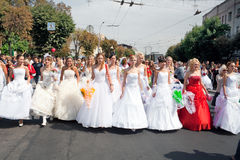 Parade of brides Royalty Free Stock Image