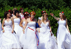 The parade of brides Stock Image