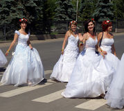 The parade of brides Royalty Free Stock Photo