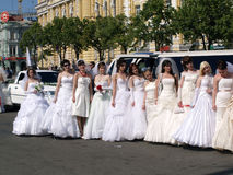 Parade of fiancees is in Kharkov (Ukraine) royalty free stock image
