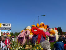 Parade flowers. Many tourists come here every year to see the flower festival will be held in Holland Stock Photography