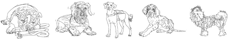 parade of purebred dogs, drawing Stock Photos