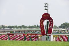 Parade Ring at Tokyo Racecourse, Japan. General view of the winning post of Japanese Derby at Tokyo Racecourse, Fuchu, Tokyo, Japan Stock Photo
