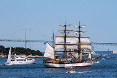 Parade of Sail, Newport, RI. Stock Photos