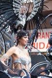 Parade van Las Palmas de hoofdcarnaval Stock Foto