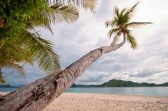 Paradice tropicale Fotografie Stock
