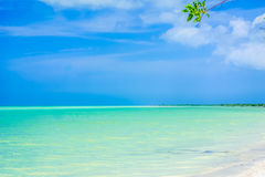 Paradies beach of island Holbox in Yucatan - Mexico Stock Image