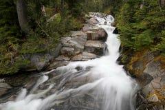 Paradies-Fluss am Berg Rainier National Park Stockbild