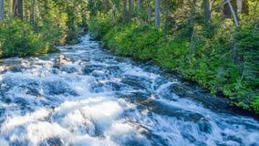 Paradies-Fluss nahe Narada-Fällen, Berg Rainier Na Stockfoto
