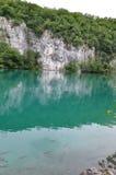 Paradies-Türkis-Wasser mit Fischen und Rocky Background Stockbilder
