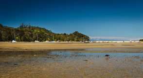 Paradiesischer Strand in Abel Tasman in Neuseeland Stockbild