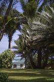 Paradiesplatz, zum großen Ferien zu genießen lizenzfreie stockfotografie