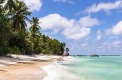 Paradiesstrand auf Schattenbildinsel, Seychellen Stockbild