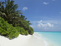 Paradiesstrand in den Malediven Lizenzfreies Stockfoto