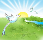 Paradiesvögel Lizenzfreie Stockbilder