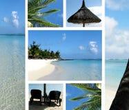 Paradijs Stock Fotografie