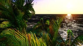Paradijs op het Eiland van Hawaï royalty-vrije stock foto's