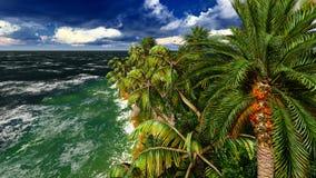 Paradijs op het Eiland van Hawaï stock foto
