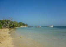 Paradijs Tropisch Eiland in Cartagena royalty-vrije stock foto's