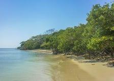Paradijs Tropisch Eiland in Cartagena stock afbeeldingen