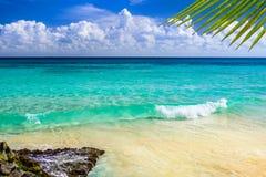 Paradijsaard, zand, zeewater, rotsen, palmbladeren en su royalty-vrije stock afbeeldingen