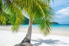 Paradijsstrand bij Tropisch Eiland Stock Foto